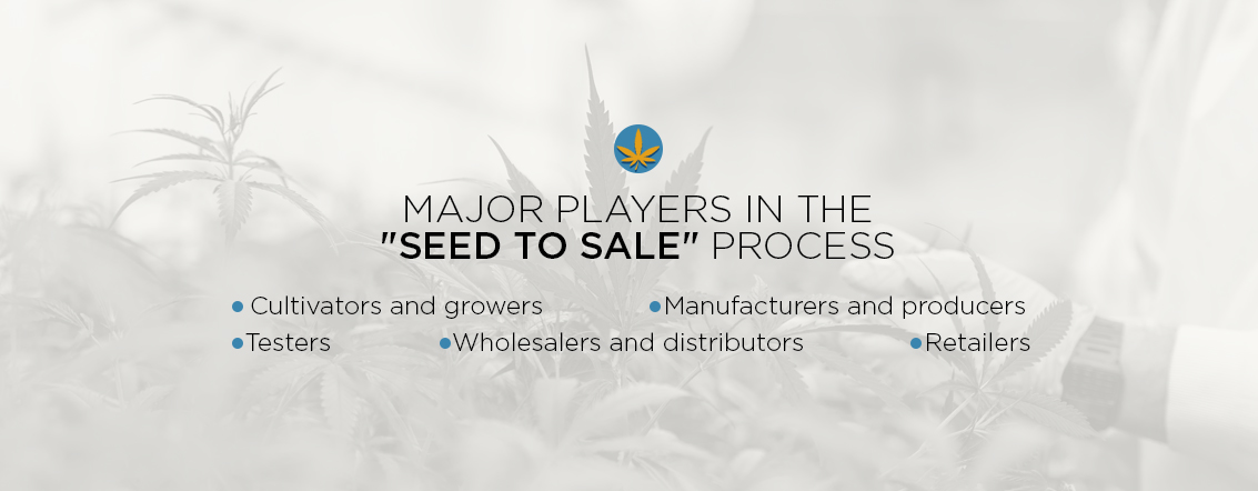 Major Players in the Seed to Sale Process