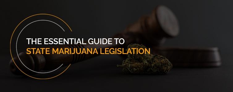 essential guide to state marijuana legislation