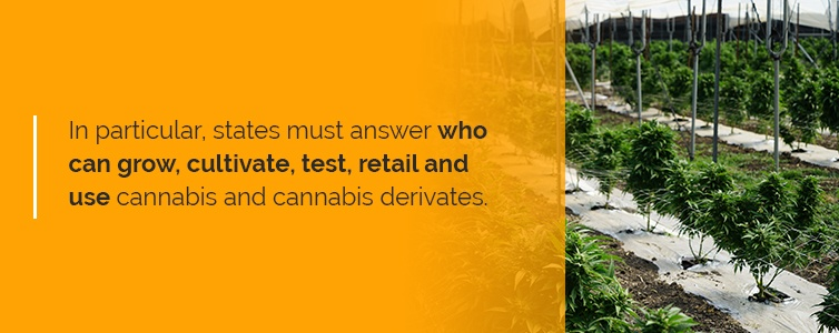who can grow, cultivate, test, retail and use cannabis and cannabis derivates