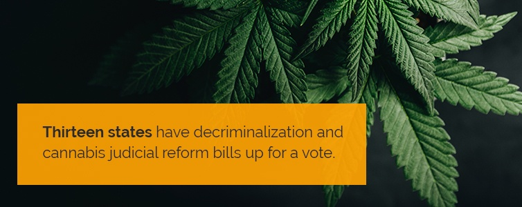 Thirteen states have decriminalization and cannabis judicial reform bills up for a vote
